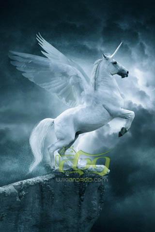 3D Unicorn (3)