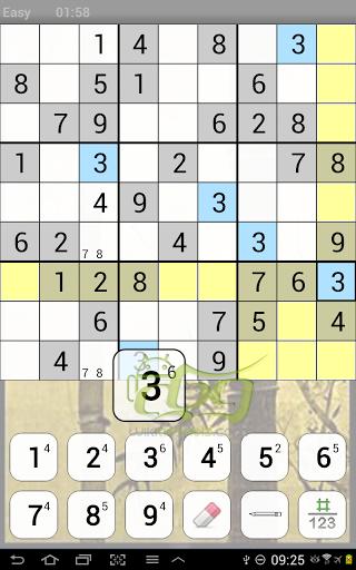 com.icenta.sudoku.ui1.jpg
